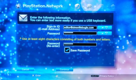 Screen Capture: PS3: PSN Login Details