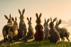 Still from Watership Down