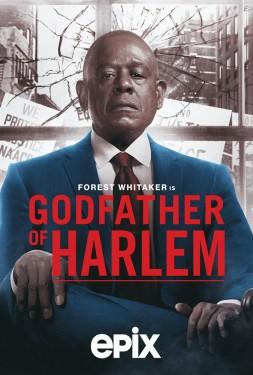 Poster for Godfather of Harlem
