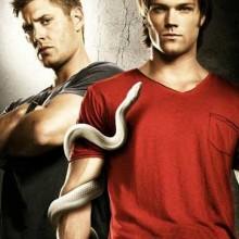 Poster for Supernatural