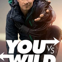 Poster for You vs Wild